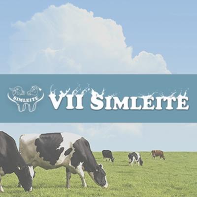 Em Viçosa, a arte da pecuária leiteira