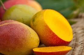 Ceagesp marcas e embalagens de hortaliças e frutas