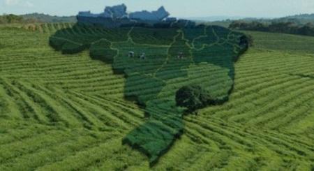 Brasil deve tomar cuidado com a imagem no mercado externo