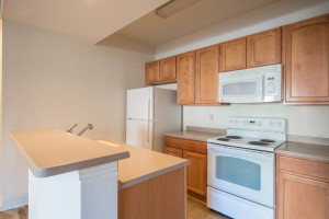 Kitchen For Sale Penderbrook