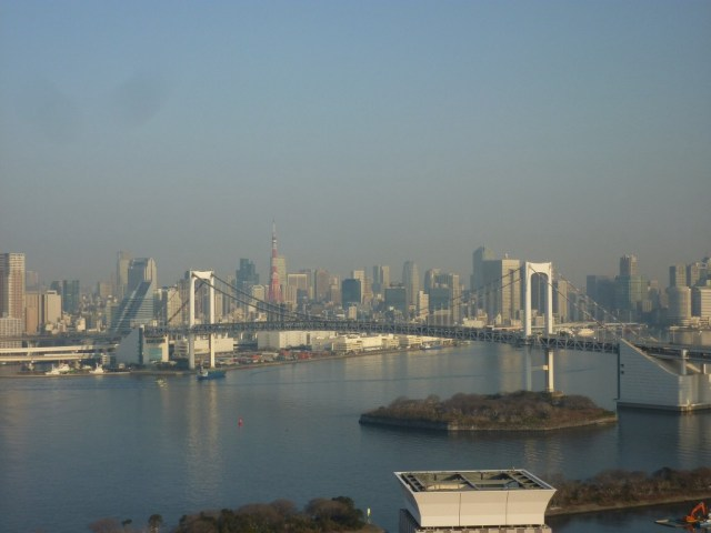 View of Tokyo from the hotel