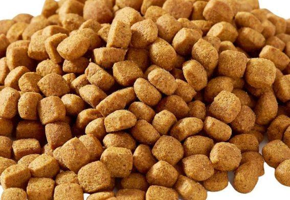 tahılsız köpek maması çeşitleri