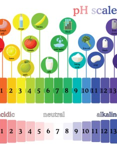 Ph scale diagram with corresponding acidic or alcaline values for common substances food household also home winemaker archives musto wine grape company llc blogmusto rh blog juicegrape