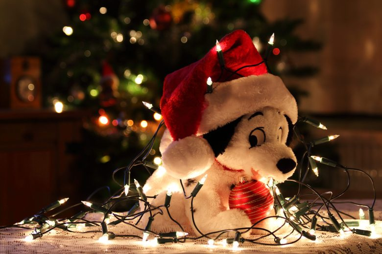 Plushies - Best Gift Ideas for Christmas