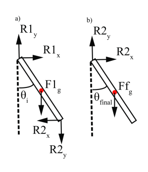 Free body diagram of two example links in our compound pendulum.