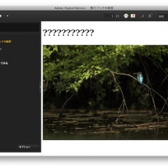 Adobe Digital Editionsの表示