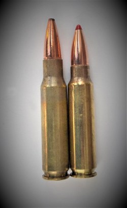 .308 Winchester, left and .300 Savage cartridge, right