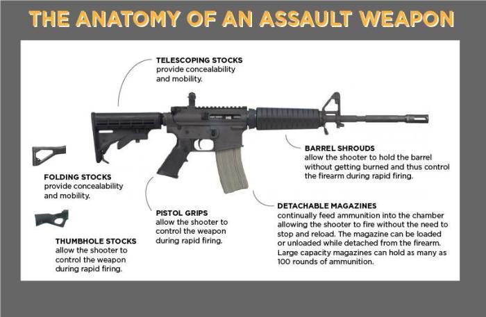 Dem  Senators Introduce Assault Weapons Ban of 2019 - The K
