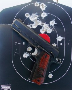 bullet holes in a silhouette target with a Dan Wesson Guardian pistol