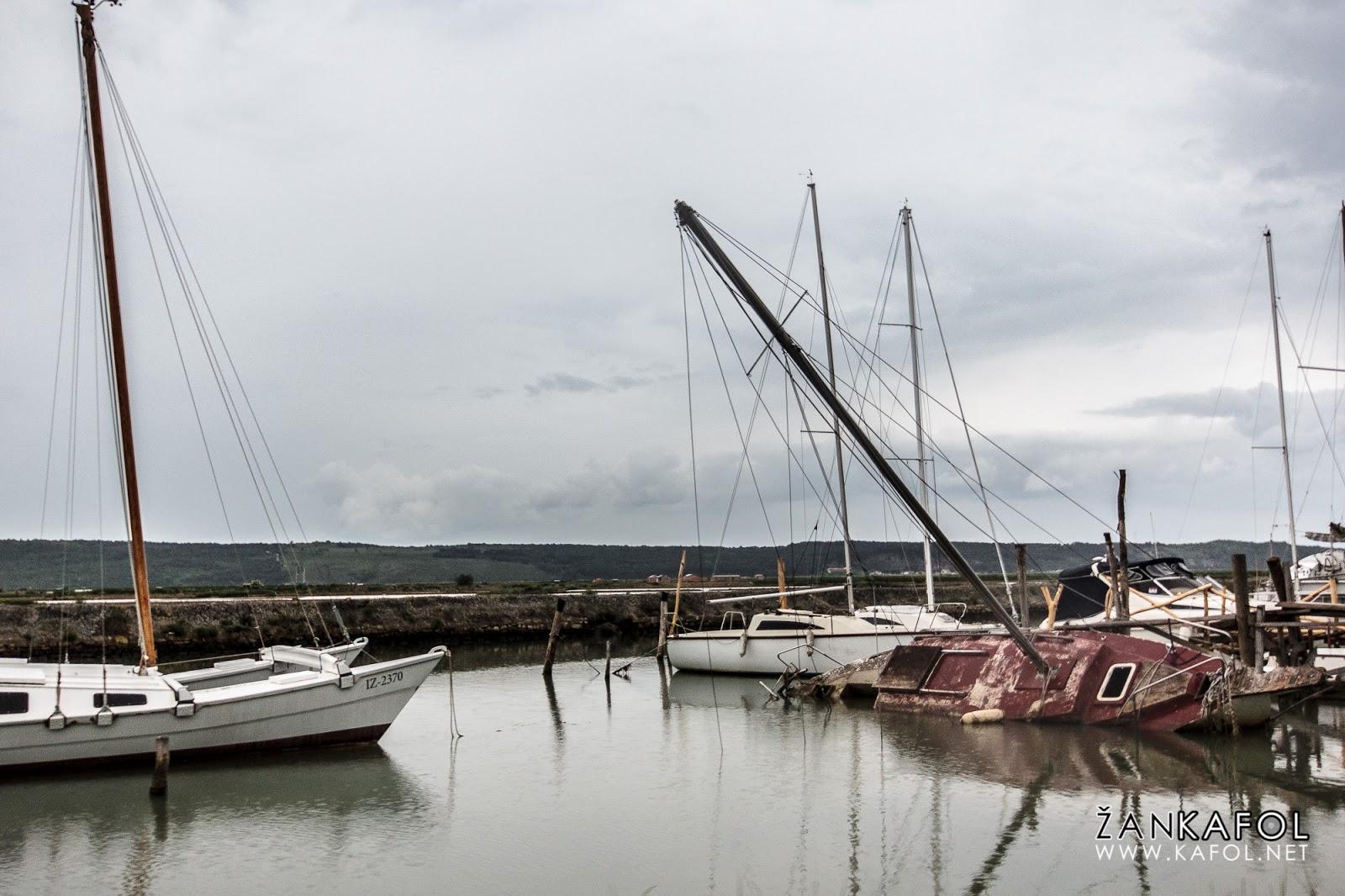 Ladje v Piranu