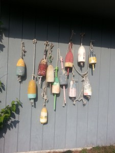 Lobster buoys decorate an old Maine barn. Some Maine lobster fishermen fish all winter; others will resume in the spring. Photo (c) Karen Hammond