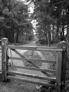 Mile 87 - Comerton, Leuchars. Sponsored by Janice and Gordon Thorburn, Sheila Orr, James Lyons and Richard Barker.