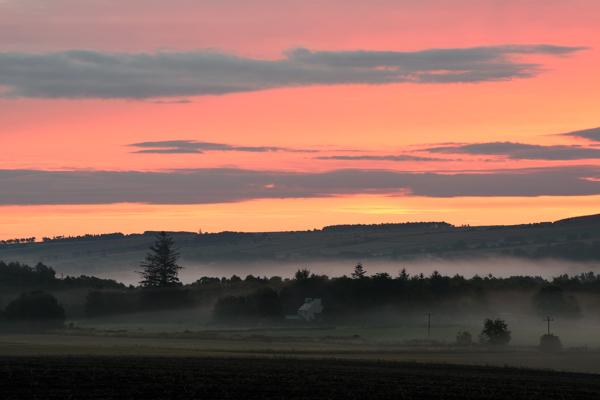 Dawn Mist, Newhall, Black Isle