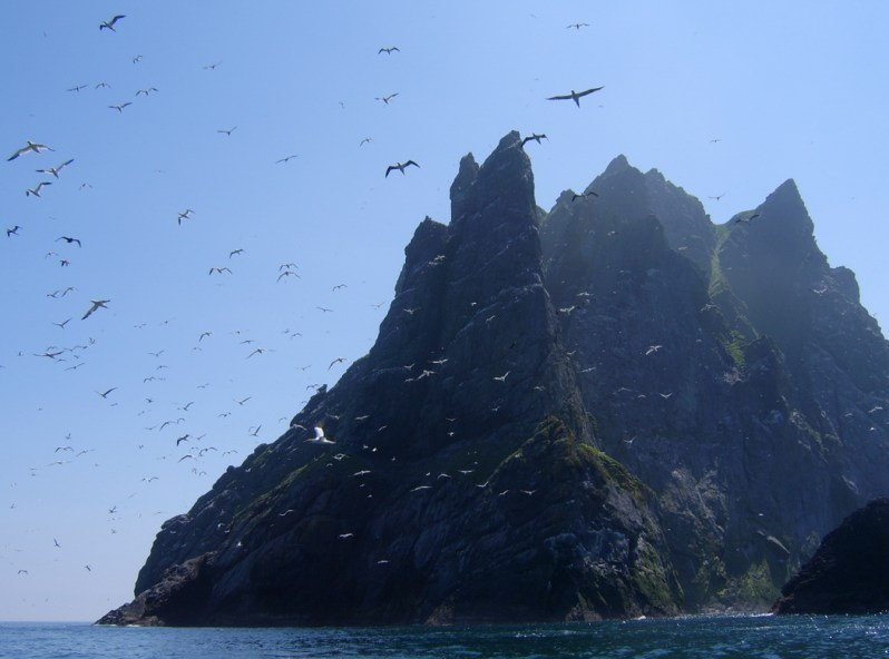 Gannets over Boreray, St Kilda