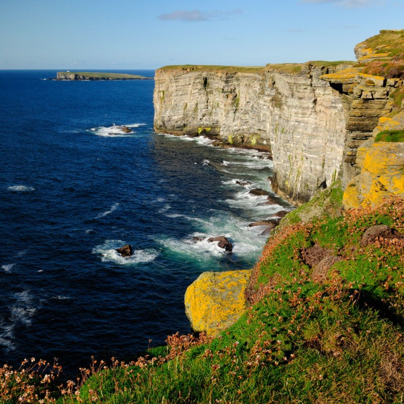 Tall grey sea cliffs with grass, flowers and yellow lichen on top, above a blue sea, with a small island in the distance