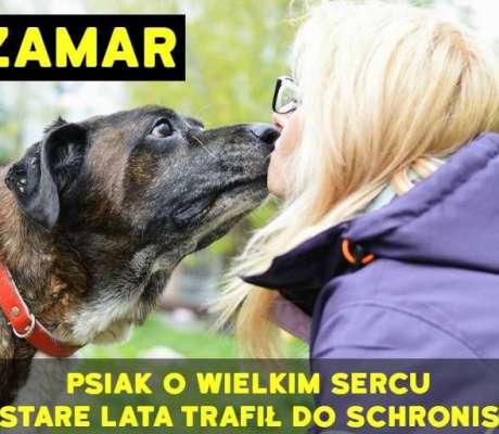 Czamar