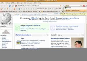 Wikipedia (Fr)