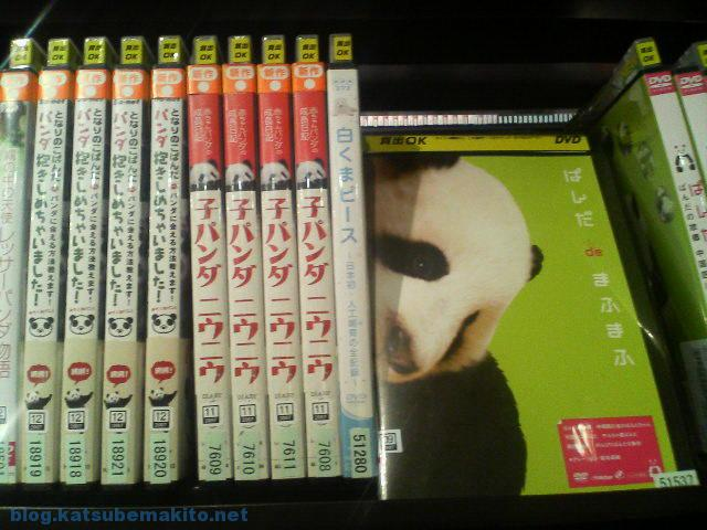 ぱんだdeまふまふ (DVD)
