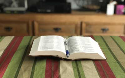 5 Effective Reading Tips To Become a Better Writer