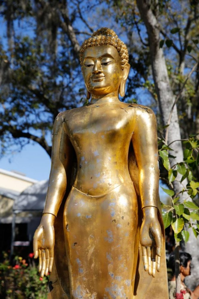 A golden buddha statue at the Wat Mongkolratanaram, photographed by NYC photojournalist, Kelly Williams