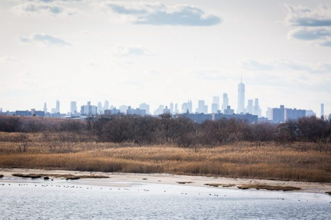NYC skyline and Jamaica Bay in Queens