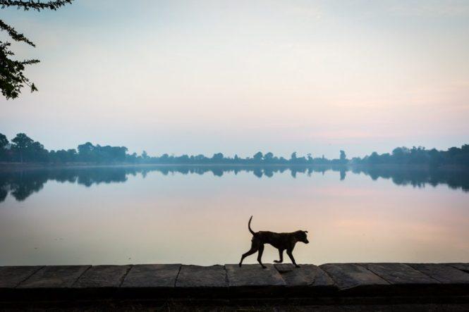 Sunrise at Srah Srang for an article on Angkor Wat travel tips