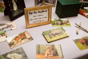 Postcards for a Bronx Zoo wedding