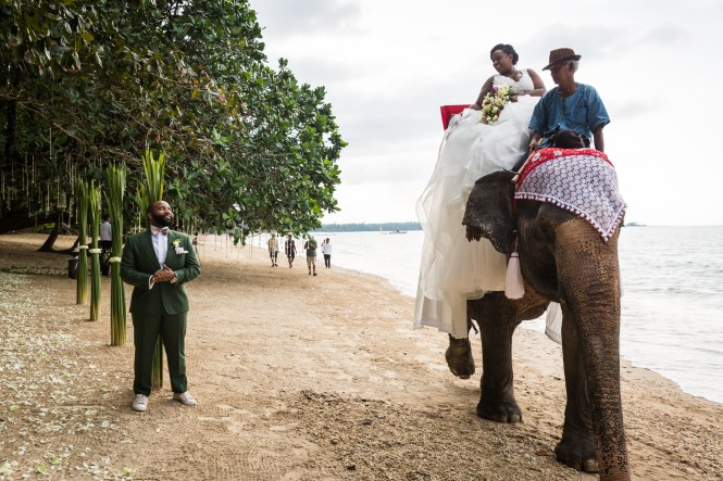 Bride and groom on the beach with elephant for an article on destination wedding planning tips