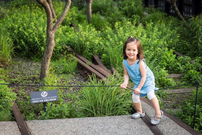 Little girl stepping over fence for an article on High Line family portrait tips