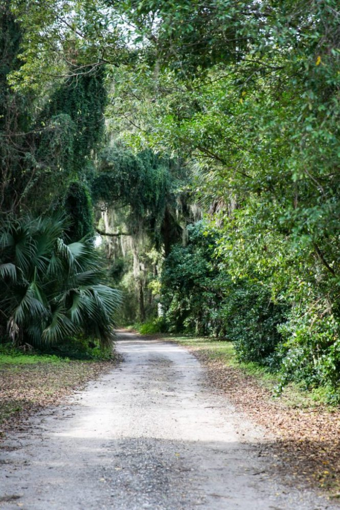 Photos of Micanopy, Florida by NYC wedding, event, and portrait photographer Kelly Williams