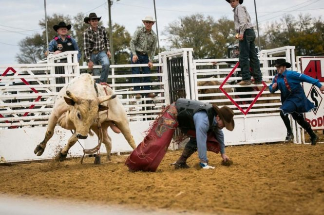 Bull riding at the county fair championship rodeo, by NYC photojournalist, Kelly Williams