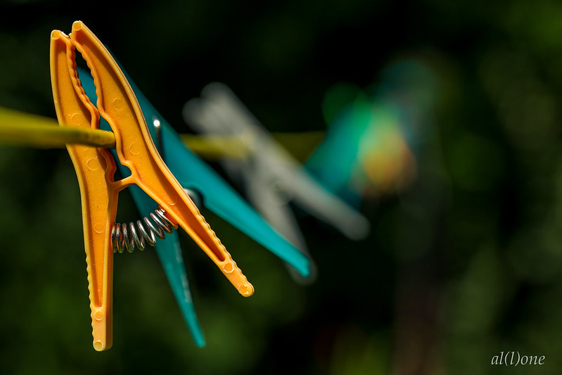 Close-up of plastic clothes pegs on a line with very shallow field of view putting most of the pegs out of focus.