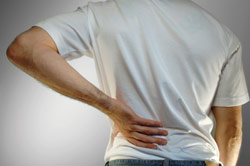 Low back pain: A physical therapist's perspective
