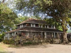 L'habitation dans son environnement ombragé