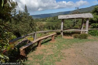 Forêt des Makes - La Réunion