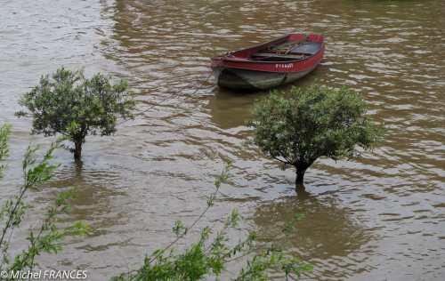 IMX_1722 La Seine en crue