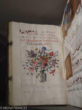 Quelques exemples de livres magnifiquement décorés