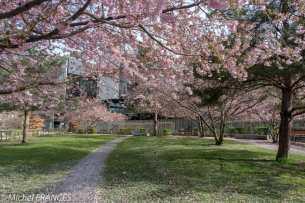 Jardin Cyprian-Norwid