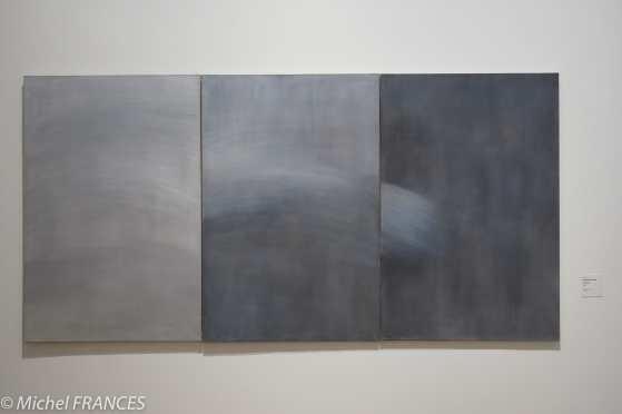 musée des beaux-arts de Lyon Geneviève Asse - Triptyque - 1971