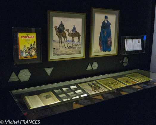 Musée des confluences - expo Touaregs