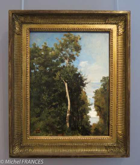 Marmottan Monet - jean-Baptiste Camille Corot - Le bois sur la côte de Grâce à Honfleur - vers 1830