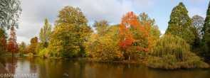 Lac de Saint-Mandé à l'automne