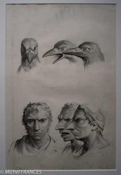 MAD - expo Drôles de petites bêtes d'Antoon Krings - Dominique Vivant Denon - Le corbeau - 1906 - Le lapin - 1906