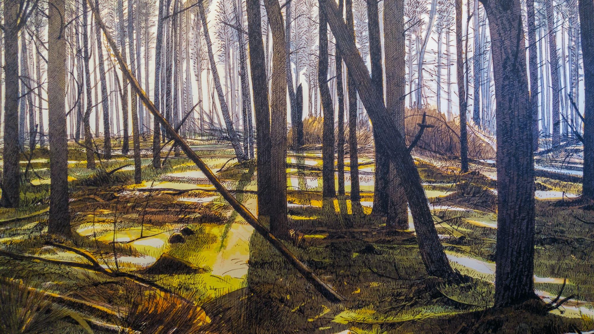 Fondation Custodia – Siemen Dijkstra – À bois perdu –