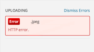 HTTP Error during image upload on wordpress
