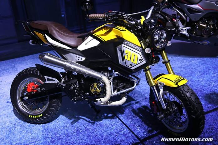 Custom Honda MSX125SF 2016 (2)
