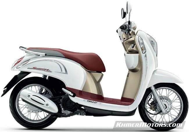 Honda Scoopy Stylish