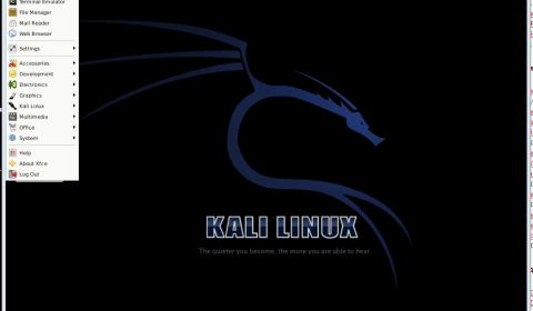 kali_vnc