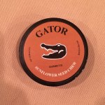 Gator Sunflower Seed Chew - Barbecue
