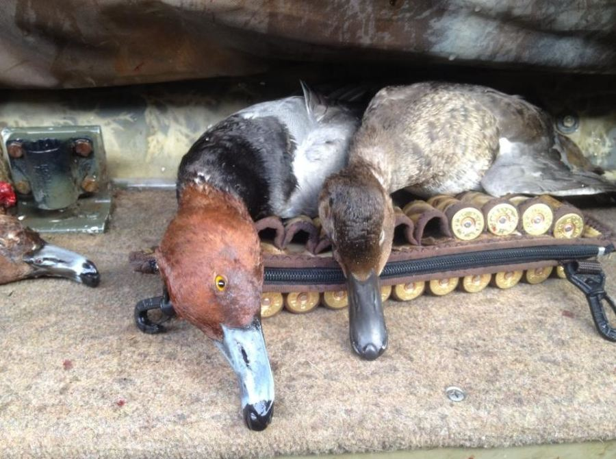 Dip-free Duck Hunting - Smeds